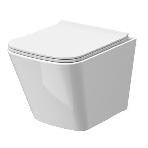 Ava Wall Hung Toilet & Soft Close Seat