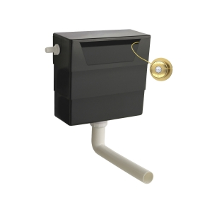 Universal Access Cistern with Brushed Brass Traditional Flush Plate