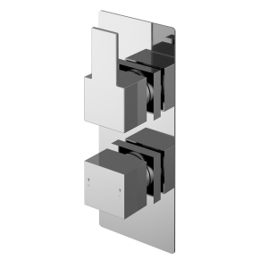 Sanford Twin Thermostatic Shower Valve With Diverter