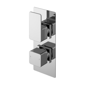 Windon Twin Thermostatic Shower Valve