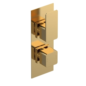 Windon Brushed Brass Twin Thermostatic Shower Valve With Diverter