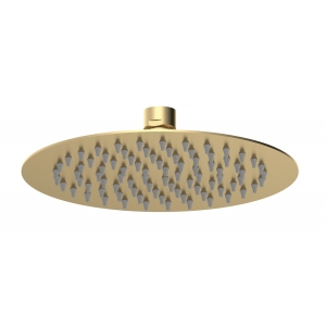 Brushed Brass Round Fixed Shower Arm